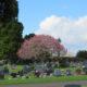 Artinstone Granite headstone